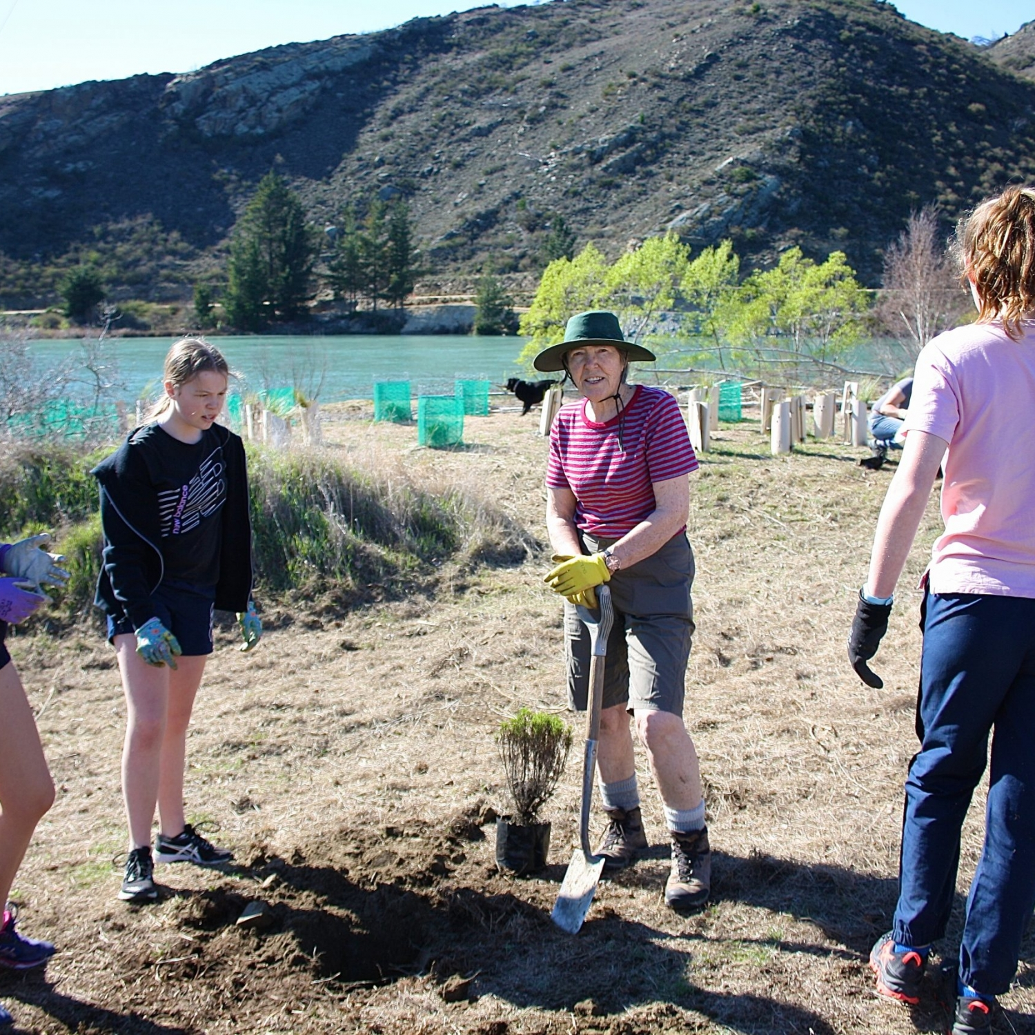 teaching and learning how to plant native shrubs community initiative