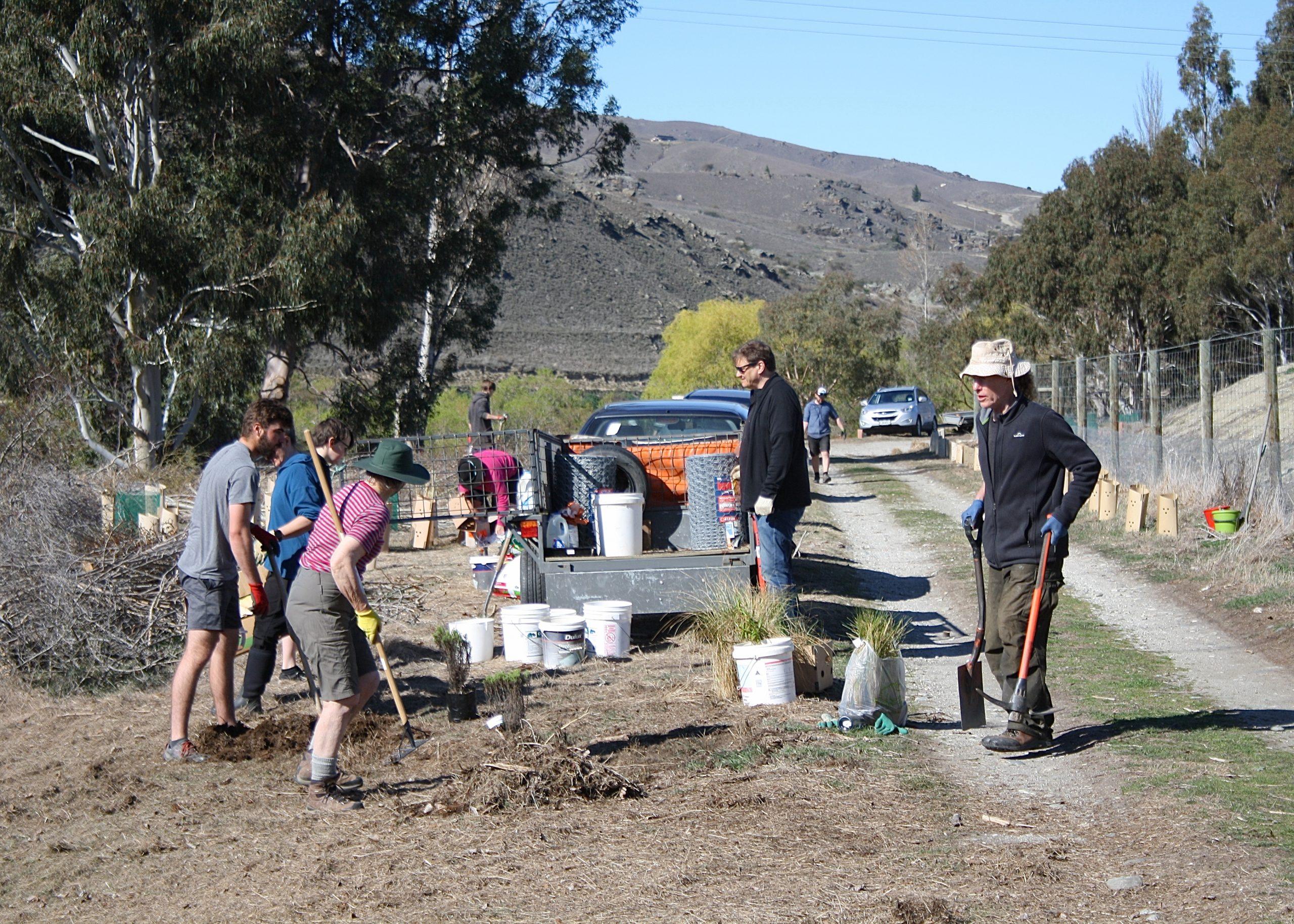 team work to plant natives for reforestation